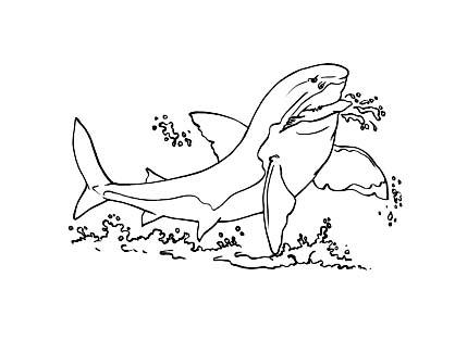 Requin 6 coloriage de requins coloriages pour enfants - Coloriage requin a imprimer ...