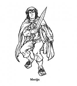 Le seigneur des anneaux : Merry