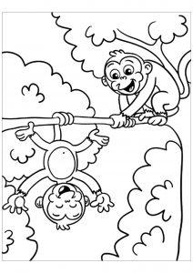 Dessin de singe gratuit à imprimer et colorier