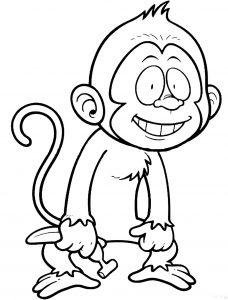 Image de singe à télécharger et colorier