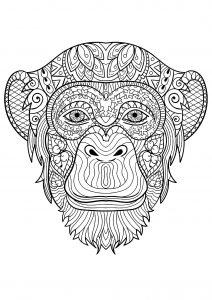 Coloriage de singe à imprimer pour enfants