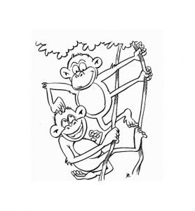 coloriage-singe-3 free to print