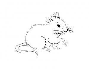 Coloriage de souris à imprimer