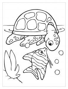 Coloriage de tortue gratuit à colorier