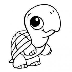 Image de tortue à imprimer et colorier