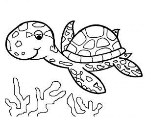 Image de tortue à télécharger et colorier