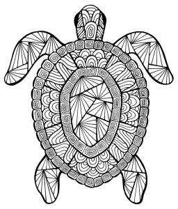 Coloriage de tortue pour enfants