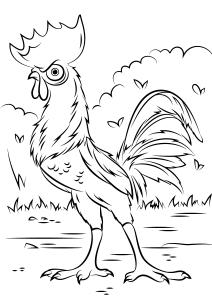 Coloriage facile vaiana magnifique dessin de heihei le coq
