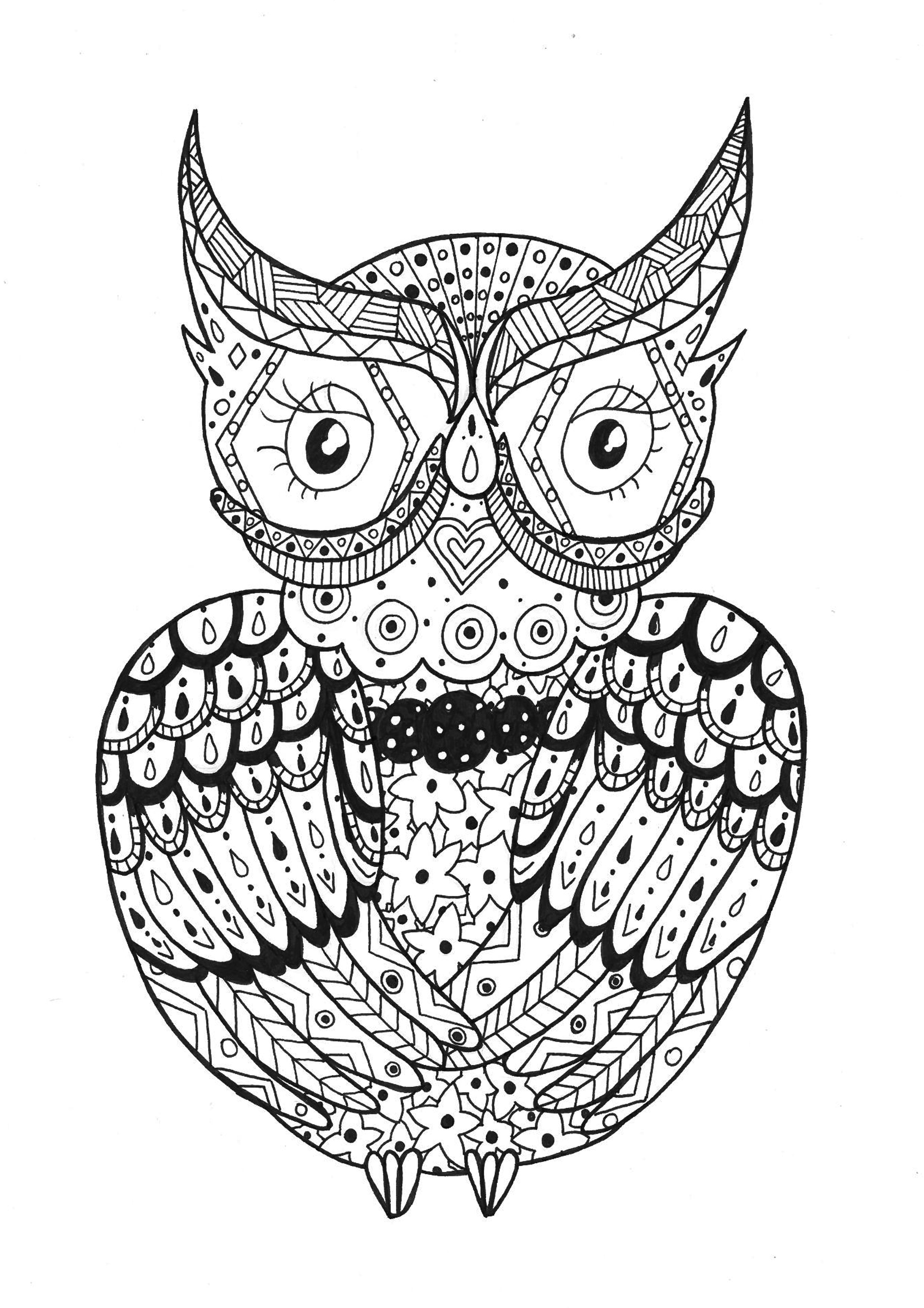 Hibou Zentangle Rachel Coloriage Zentangle Coloriages