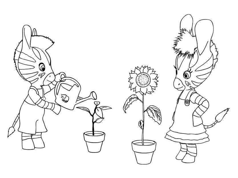 Zebre zou 4 coloriage zou coloriages pour enfants - Coloriage zebre a imprimer ...